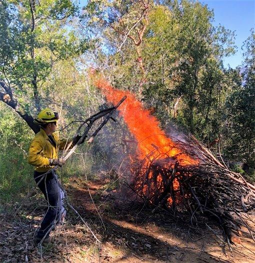 Firefighter tending a controlled burn