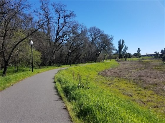 Image of Foss Creek Trail on a sunny day