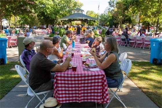 People sitting at tables and eating at Age-Friendly Picnic.